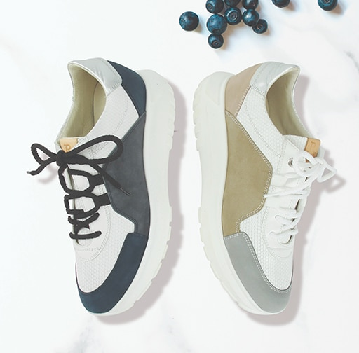 Sneakers category